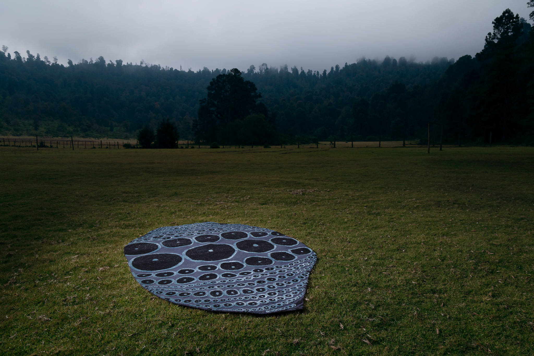 Water Fossil Rug by Jose Maria balmaceda for Ángulo Cero_Photo by Jose Margaleff